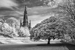 "Princes Street Gardens IR • <a style=""font-size:0.8em;"" href=""http://www.flickr.com/photos/20797048@N00/15644592712/"" target=""_blank"">View on Flickr</a>"