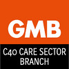C40 Care Sector Logo