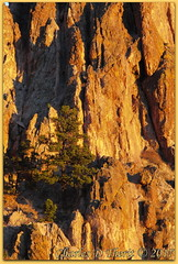 Morning comes (ctofcsco) Tags: 1200 110 220mm 28300mm 50d black canon colorado coloradosprings contrast ef28300mmf3556lisusm eos50d explore f11 gardenofthegods gardenofgodscom landscape orange pinetree portrait red rock rockformations rocks sunrise superzoom telephoto texture tree unitedstates usa city co explored geo:lat=3887317440 geo:lon=10488632790 geotagged gleneyrie nature northamerica park wwwgardenofgodscom pretty