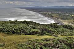 Muriwai (sgtsalamander) Tags: nikon d800 hdr nz muriwaibeach trees ocean blacksand sky sigma 105 newzealand