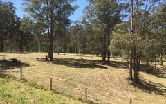 Lot 43/124 Duns Creek Road, Duns Creek NSW