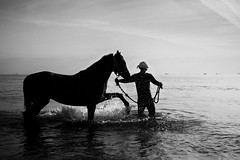 (Vishnu Josh) Tags: horse beach morning foggymorning horseride bath silhouette blackandwhite