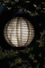 Lampion (jueheu) Tags: lampion laterne lampe licht gegenlicht morgens dunkel leuchten lamp schatten shadow bokeh