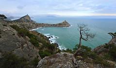 Windy winter day at Noviy Svet ll, Crimea (Mike Reva) Tags: crimea wideangle winter russia trees travelling travel sea seashore blacksea rocks cape canon6d 6d visipix