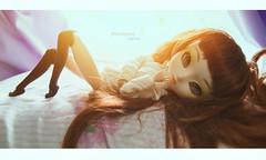 Did we miss the morning? (♥ Gabbie) Tags: pullip paja regeneration pajaregen regen rewigged fashion doll asian rechipped green eyes ginger obitsu 27cm obitsu27cm morning sun groove junplanning