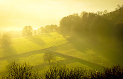 Rural Mistery (Pixelated Sky) Tags: view sun landscape calm grazing farmland mist gloucestershire green rural shadows countryside autumn