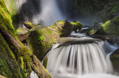Water Feature (Tom Fenske Photography) Tags: water falls slow motion blur river stream green moss oregon wondersofnature