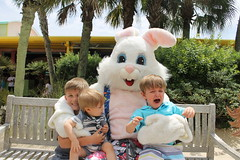 Easter Bunny 045