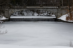 Frozen #2 (aleadam) Tags: frozen ice cold white bridge kill water winter aleadam alejandroadam