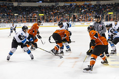 "Missouri Mavericks vs. Wichita Thunder, March 25, 2017, Silverstein Eye Centers Arena, Independence, Missouri.  Photo: © John Howe / Howe Creative Photography, all rights reserved 2017. • <a style=""font-size:0.8em;"" href=""http://www.flickr.com/photos/134016632@N02/33544445272/"" target=""_blank"">View on Flickr</a>"