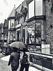 Montreal (Taymaz Valley) Tags: uk usa canada iran iranian persian tehran iranianart persianartist nyc newyork montreal toronto waterloo guelph vancouver ottawa ottawaartist india ireland england british hongkong japan tokyo china washington boston chicago california florida photography photographer photooftheday artdealer