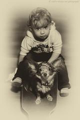Who is the driver? ;-) (verenaredfoxgredler) Tags: portrait porträt redfox redfoxdreamartphotography verena gredler innsbruck tirol austria österreich photographer fotografin photomodel model modell fotomodel baby kid boy junge kind child children hund dog haustier pet animal tier bw sw monochrome sepia aged antique skateboard board longboard chihuahua