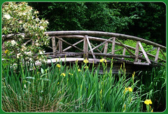 Bridge at Lost Lagoon (FernShade) Tags: vancouver stanleypark lostlagoon woodenbridge springtime scenery scenic urbannature flowers springflowers
