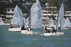 EQUIPE 3 (yctahiti) Tags: nz napier national 2017 optimist