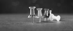 Pins.... (Elisafox22 A bit ON/OFF at the moment!) Tags: elisafox22 sony nex6 e30mm f35 macrolens macro monochromebokehthursday hmbt thumbtacks pins pushpins bokeh monochrome blackandwhite monotone shadows bw mono greyscale elisaliddell©2017