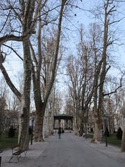 Allee at Park Zrinjevac, Zagreb, Croatia (Paul McClure DC) Tags: zagreb croatia hrvatska balkans feb2017 historic architecture scenery