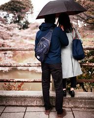 Tokyo50-33 (Diacritical) Tags: chiyoda japan tokyo street march312017 leicacameraag leicamtyp240 summiluxm11435asph f14 ¹⁄₃₅₀sec centerweightedaverage