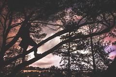 IMG_6186-2 (nxrbugan) Tags: longexposure sun sunset sunrise malta europe love beautiful water holland follow new eyes blueeyes hazeleyes lighttrails instagood cars reflection sky beach summer swim flower nature tree green night light portrait art white snow vacation sea city house music