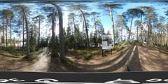 Reuhari islands 7(12) (Rake_y) Tags: reuharinsaaret reuharinniemi tampere suomi finland spring lake näsijärvi nasijarvi forest metsä ranta beach