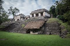 Palenque Ruins-6