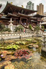 Chi Lin Nunnery: Ponds (andryn2006) Tags: buddhistmonastry chilinnunnery diamondhill hongkong kowloon pond lilly temple pavilion