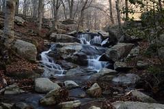 Riera de Passavets (Hachimaki123) Tags: paisaje landscape montseny cascada water waterfall agua parcnaturaldelmontseny río rio river rieradepassavets riera
