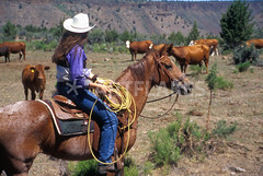 COWBY-D10 (cheroyori) Tags: northwest pacificnorthwest centraloregon oregon rancher ranching ranch horseriding roping horse oldwest farwest wildwest cowgirls cowgirl usa