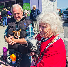 MOM, POP & THE BABIES (akahawkeyefan) Tags: dogs people davemeyer pacificgrove man woman