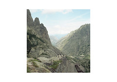 CRSC-09 (sm0r0ms) Tags: france 6x6 film analog landscape photography kodak hasselblad medium format portra 2014 500cm autaut