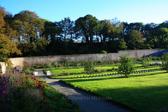 Secret Garden (Ken Meegan) Tags: ireland garden secretgarden walledgarden tinternabbey cowexford saltmills colcloughwalledgarden