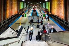 O'Hare (Blue Line) (chrisar676) Tags: usa chicago color colour colors station stairs america underground us illinois colours cta blueline unitedstates sony unitedstatesofamerica bahnhof ohare treppe ubahn amerika farben stufen treppen ohareinternationalairport vereinigtestaatenvonamerika sonydscrx100m3 chicagotransitauthorization