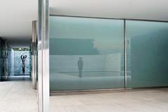 Mies (La T / Tiziana Nanni) Tags: city travel portrait reflection architecture portraits luca miesvanderrohe riflessi ritratti ritratto architettura barcellona lessismore padiglione manportrait iamyou tizianananni