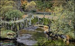 Slater's Bridge (geospace) Tags: lakedistrict cumbria slate slatersbridge