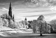 "Princes Street Gardens IR • <a style=""font-size:0.8em;"" href=""http://www.flickr.com/photos/20797048@N00/15023013704/"" target=""_blank"">View on Flickr</a>"