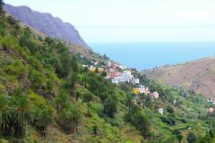 Barranco del Cedro, Hermigua, La Gomera (Ren Silvio H.) Tags: hermigua lagomera cedro barrancodelcedro