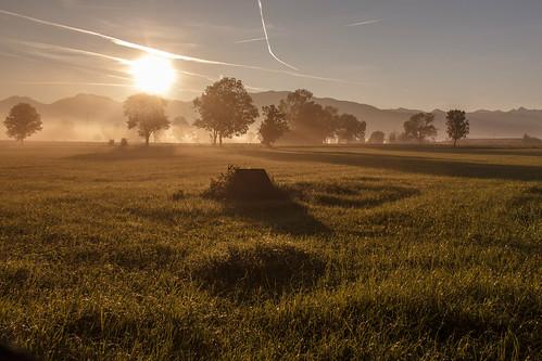Morgenstimmung im Altstätter Riet