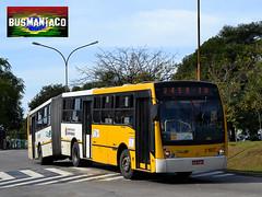 3 1607 DSC_0670 (busManíaCo) Tags: bus yellow amarelo vip ônibus busmaníaco consórcioplus nikond3100