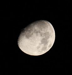 Cheeky Moon Shot