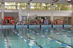 20141004finding nemo 009 (Jeroen Roos) Tags: scouts explorers stam scouting 2014 welpen dolfijnen wildevaart zwemwedstrijden regioamsterdamamstelland