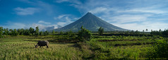 Philippines, 2010 (Pascale Jaquet & Olivier Noaillon) Tags: panorama philippines paysage luzon legaspi volcan