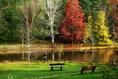 Empty benches (s_gulfidan) Tags: autumn trees reflections bench pond 100club 50club 400faves saariysqualitypictures