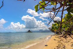 Mokoli'i Island (Chinaman's Hat). (THE SMOKING CAMERA HeRvEy BaY davefryer) Tags: vacation usa holiday hat landscape island gold hawaii flickr award destination honolulu states mokolii chinamans canon600d 1116tokina seascapeskyscrapephotographygroup httpswwwflickrcomgroupslandscapeseascapeskyscape