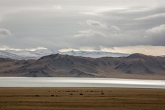 Mongolia landscape-6 (jphotonz) Tags: mountain landscape flat empty mongolia olgii