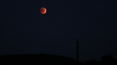 Blood Moon (Glen in Franklin County) Tags: morning blue sky moon canon eclipse blood outdoor ridge astronomy 60d