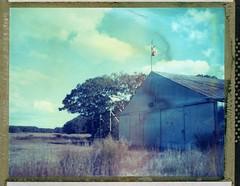Trade Winds (snacky.) Tags: autumn film field polaroid vineyard farm instant marthasvineyard expired speedgraphic t59 roidweek2014