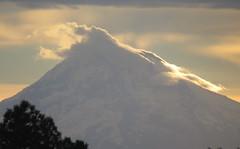 Mt Hood Sunrise (maytag97) Tags: mounthood mthood mountain orographiccloud sunrise naturemasterclass maytag97 nikon d750