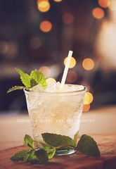 Mint JulepCheers! (Samantha Nicol Art Photography) Tags: life ice leaves still drink bokeh mint alcohol samantha julep nicol
