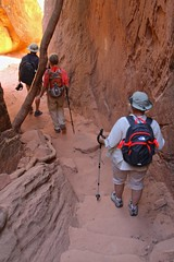 IMG_2209 (bluegrass0839) Tags: canyon national hoodoo bryce zion zionnationalpark brycecanyon nationalparks narrows hoodoos horsebackride parkthe