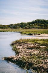 West End Marsh, Cape Cod, MA (Garret Voight) Tags: ocean sea sky seascape beach nature water landscape outdoors capecod massachusetts newengland atlantic national marsh wilderness seashore