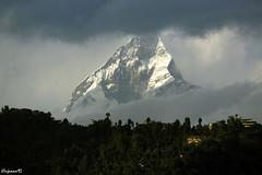 Mount_Machhapuchchhre (njanam92) Tags: travel nepal mountains nature clouds canon photography eos tour kathmandu paragliding amateur pokhara efs machhapuchchhre